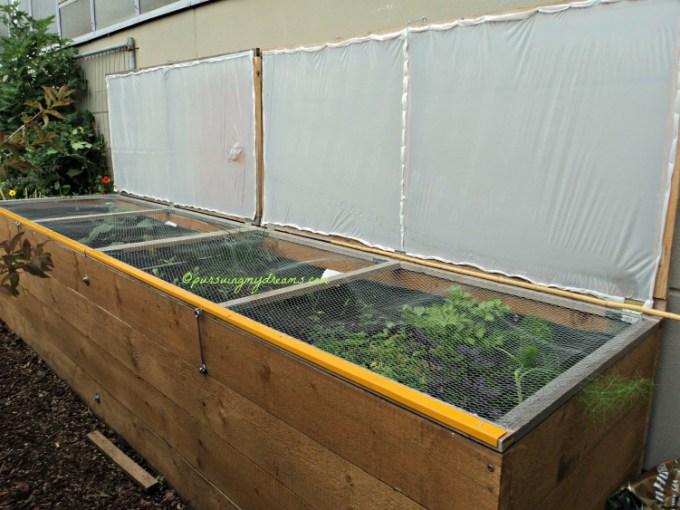 Tempat nanam sayuran. Ini model greenhouse mini. Babenya Ben mau bikinin buat saya