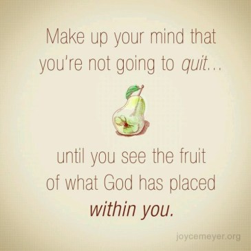 Joyce Meyer quote Never give updon't quit