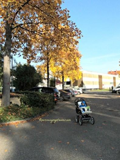 Pemandangan musim gugur. Daun pepohonan mulai menguning. Foto 12 oktober 2015
