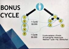 Bonus cycle
