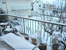 Putih dimana-mana white januari