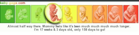 Pregnancy Calendar anak kedua. Bikin screenshootnya aja supaya pas dengan tanggal ketika postingan dibuat