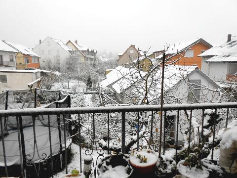Salju yang Datang lebih Awal