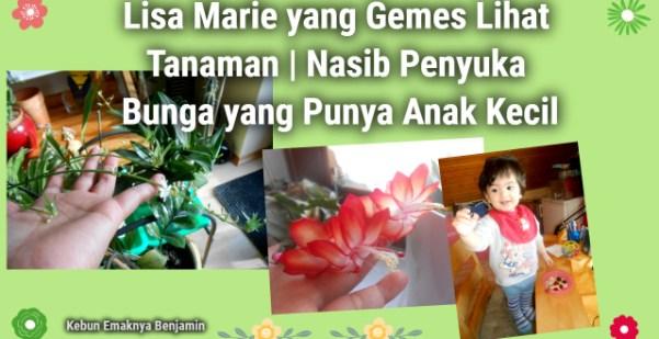 Lisa Marie yang Gemes Lihat Tanaman   Nasib Penyuka Bunga yang Punya Anak Kecil