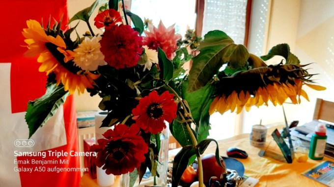 Bunga Potong hasil beli di ladangnya langsung