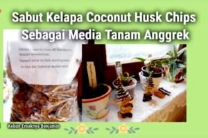 Bikin Subur Media Anggrek Coco Chip dari Sabut Kelapa