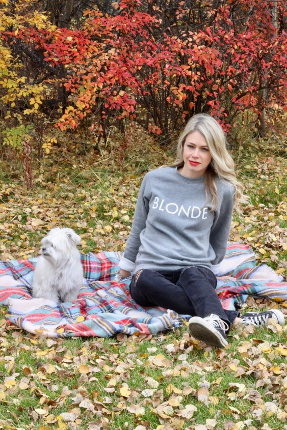 Blonde, Brunette, Redhead sweatshirt