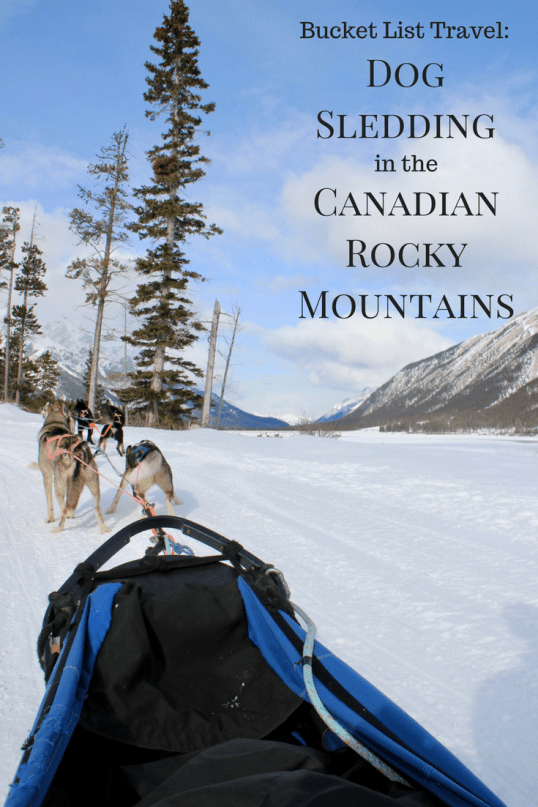 Dog sledding in Canmore and Banff, Alberta, Canada
