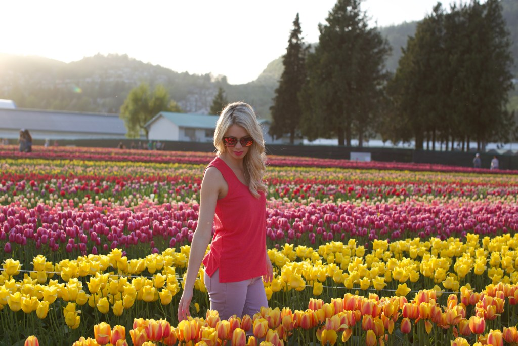 Bucket List Travel: Tulip Festival in Abbotsford, British Columbia, Canada - tulip fields spring photography