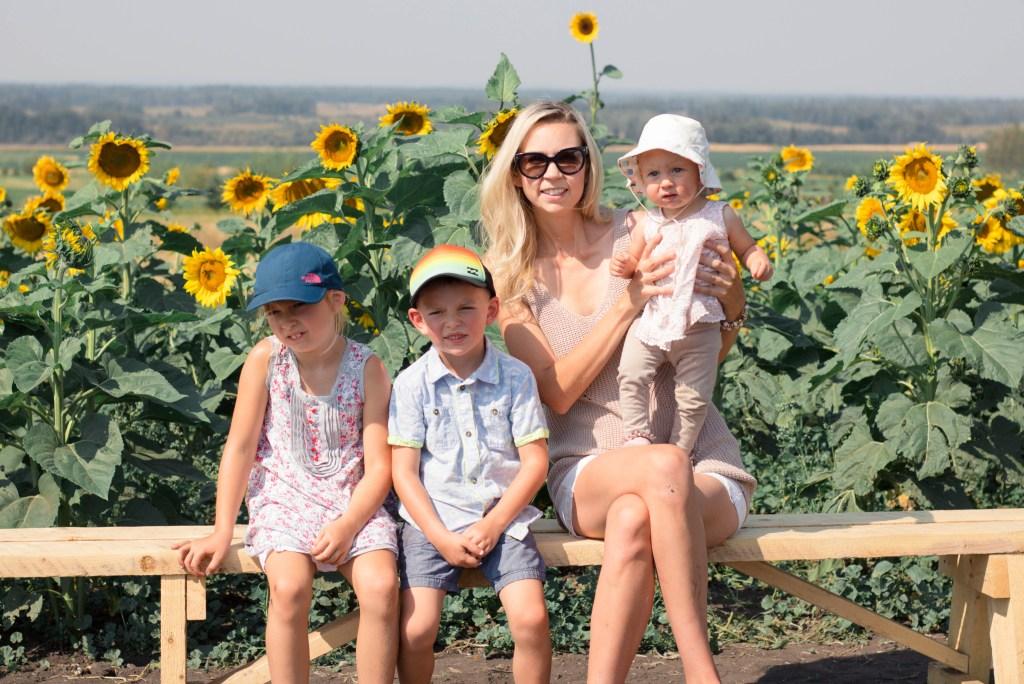 Sunflower Fields in Alberta - Sunflower Maze - Fall Family Photography ideas- travel