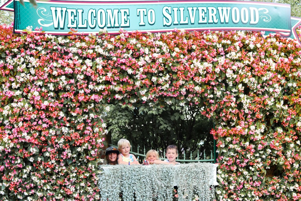 Welcome to Silverwood - Instagram flower wall - photo wall