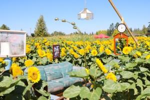 Maan Farms - Abbotsford, BC