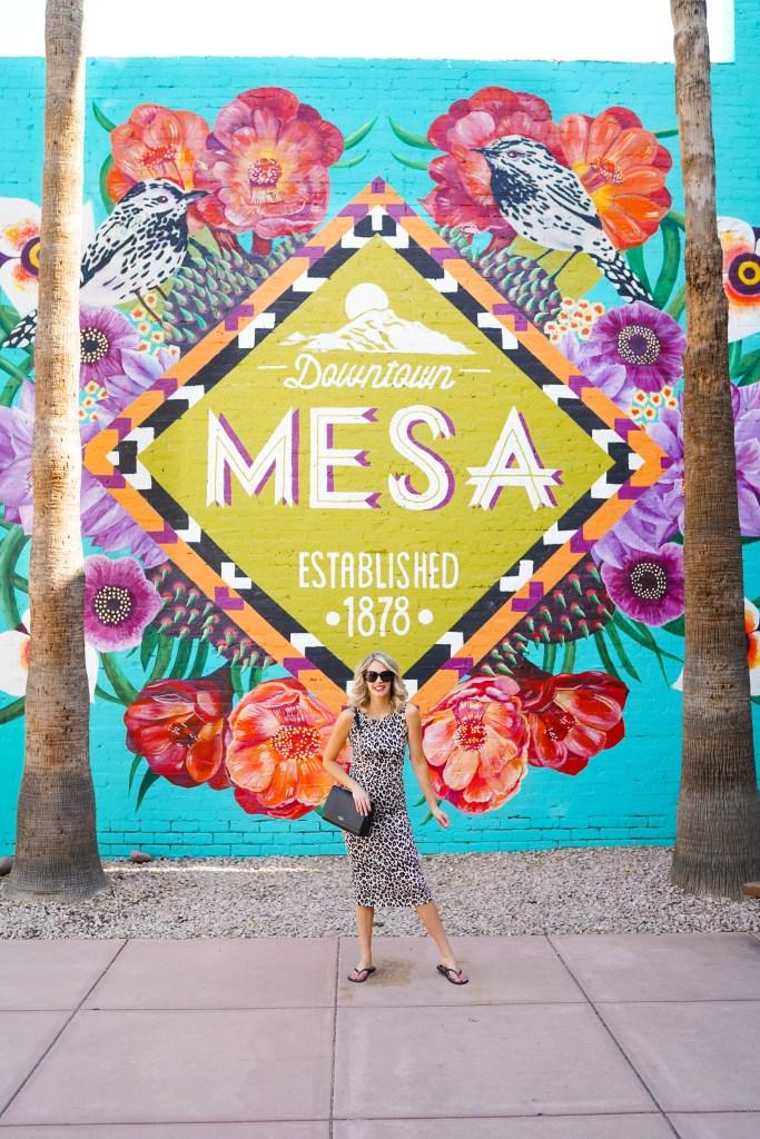 Mesa Mural Walk - Instagram Walls in Mesa, Arizona - Instagrammable walls Pheonix - travel photography