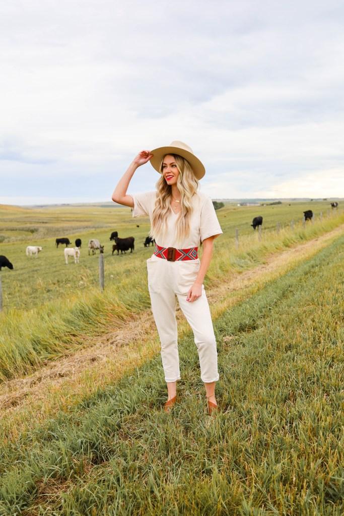 Alberta and Yellowstone. Calgary cattle field photography. Wheat fields in Alberta.