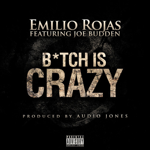 Emilio Rojas Joe Budden Bitch is Crazy