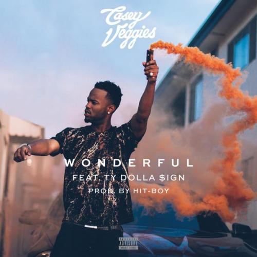 Casey Veggies Ty Dolla $ign Wonderful