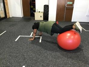 Milli Stability Ball Plank