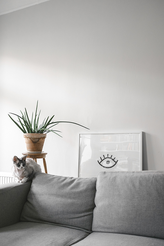puss puss magazine fine little day. Black Bedroom Furniture Sets. Home Design Ideas
