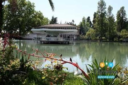 Пансионат Лебедь (Новый Афон) (Новый Афон, Абхазия) - цены ...