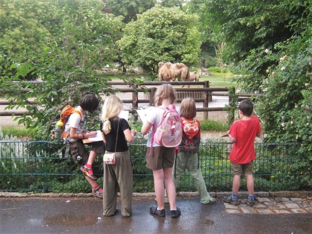 Malen und Zeichnen im Zoo