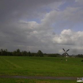 Nizozemska ---> Belgija