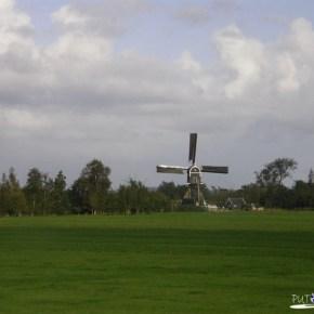 Nizozemska ---->Belgija