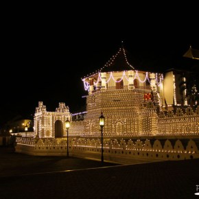 Temple of the Tooth by night
