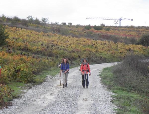 Camino de Santiago (2.dio)