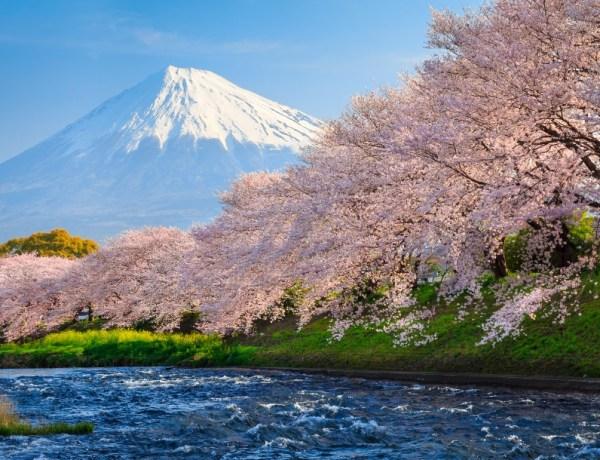 Japan u vrijeme Sakure – povratne aviokarte već od 403€