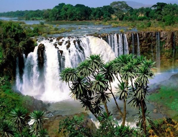 Afrika – Povratni letovi za Etiopiju za 379€