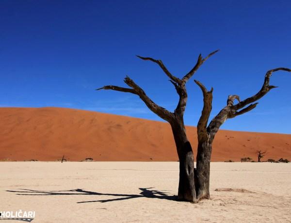 Let iznad mrtvog jezera - Namibija