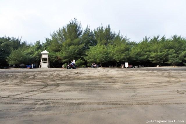 Pepohonan rimbun yang asik untuk piknik keluarga