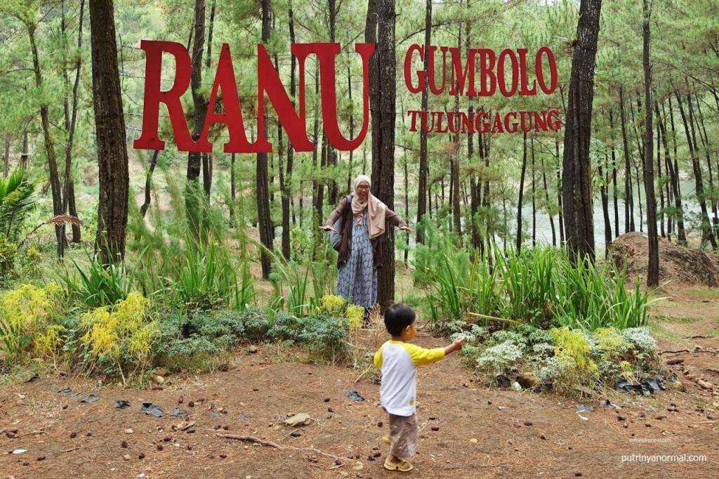 Menikmati Secuil Ranu Kumbolo di Ranu Gumbolo Tulungagung