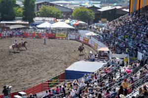 Fair Rodeo Photo