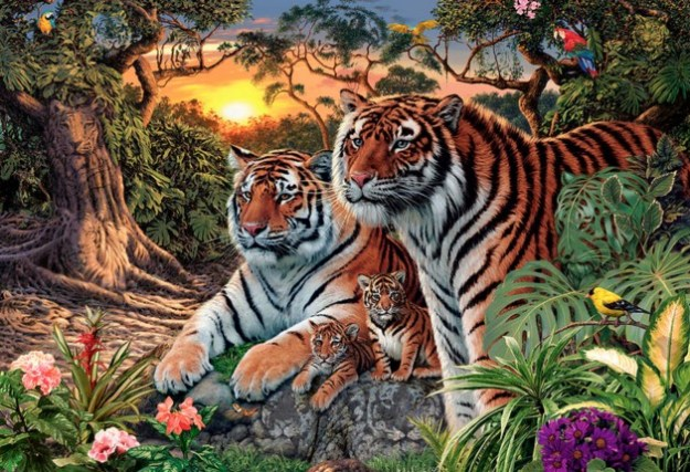 how-many-tigers-in-this-pic