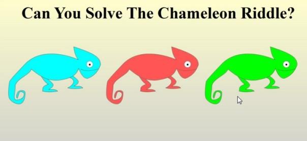 chamelion riddle