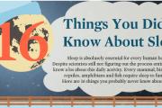 Amazing facts on sleep