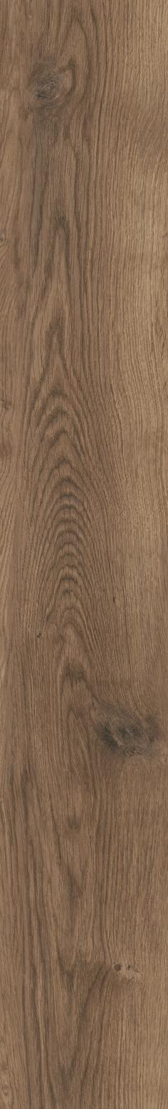 Bramber Chestnut 81607