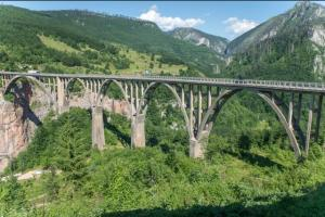 Tvorac mosta zatočen, rušitelj opjevan