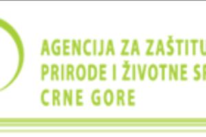 Izvještaj o kvalitetu vazduha u Crnoj Gori za 24. januar
