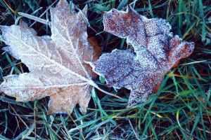 Od ponedjeljka velika promjena vremena: Kiša, snijeg i drastičan pad temperature