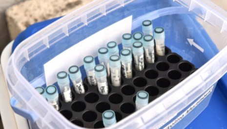 Preminule četiri osobe, 91 novi slučaj koronavirusa