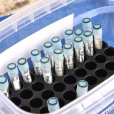 U Bosni i Hercegovini 282 nova slučaja koronavirusa, sedam preminulih