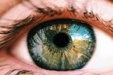 visual disturbances due to polycythemia vera