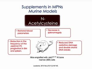 NAC supplement for MPN