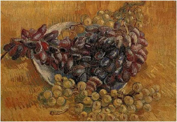 Still Life with Grapes