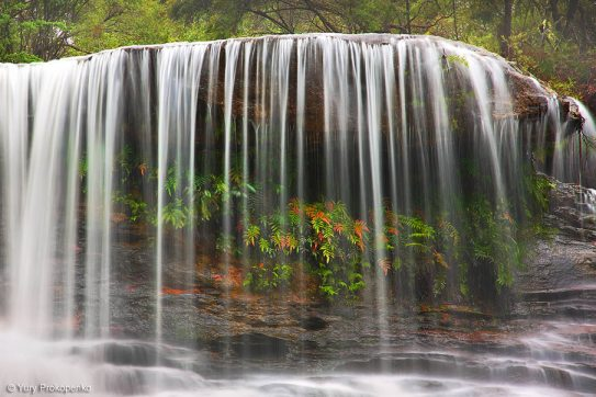 Weeping Rock Waterfall, Blue Mountains