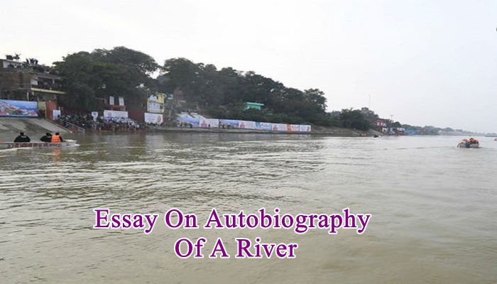 Essay On Autobiography Of A River