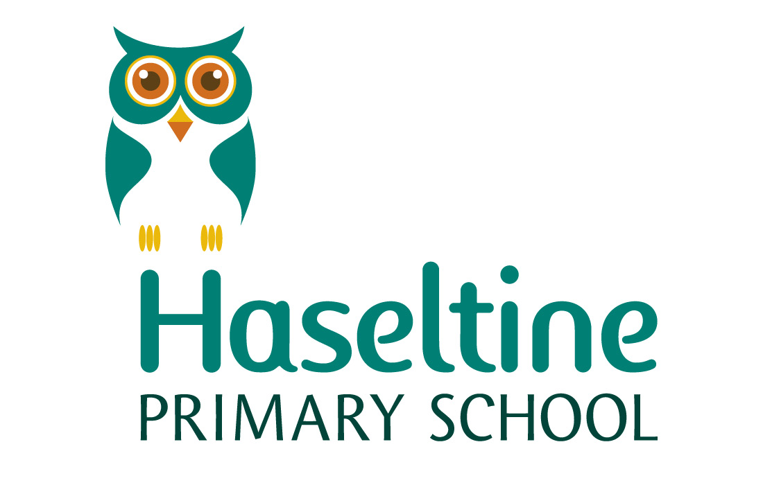 A flexible owl logo for Haseltine School by Pylon Design