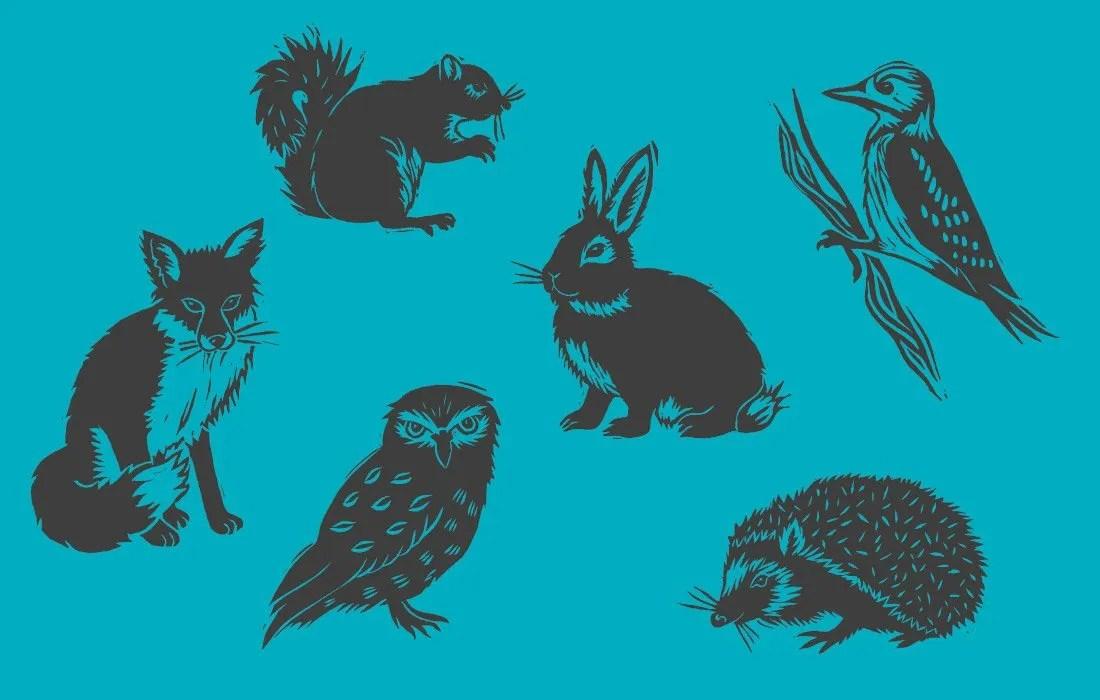 British Animals Illustration